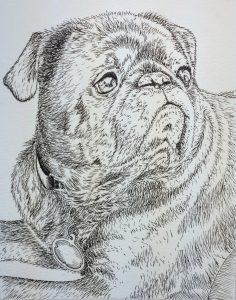 Pet portrait in ink alone.