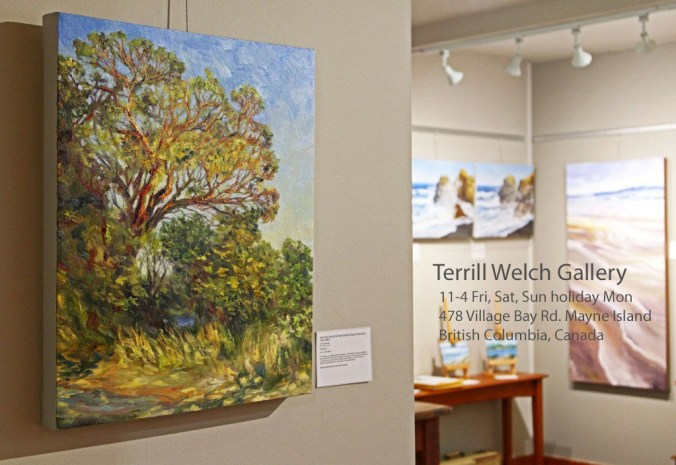 Entering the Terrill Welch Gallery August 5 2017 IMG_8924