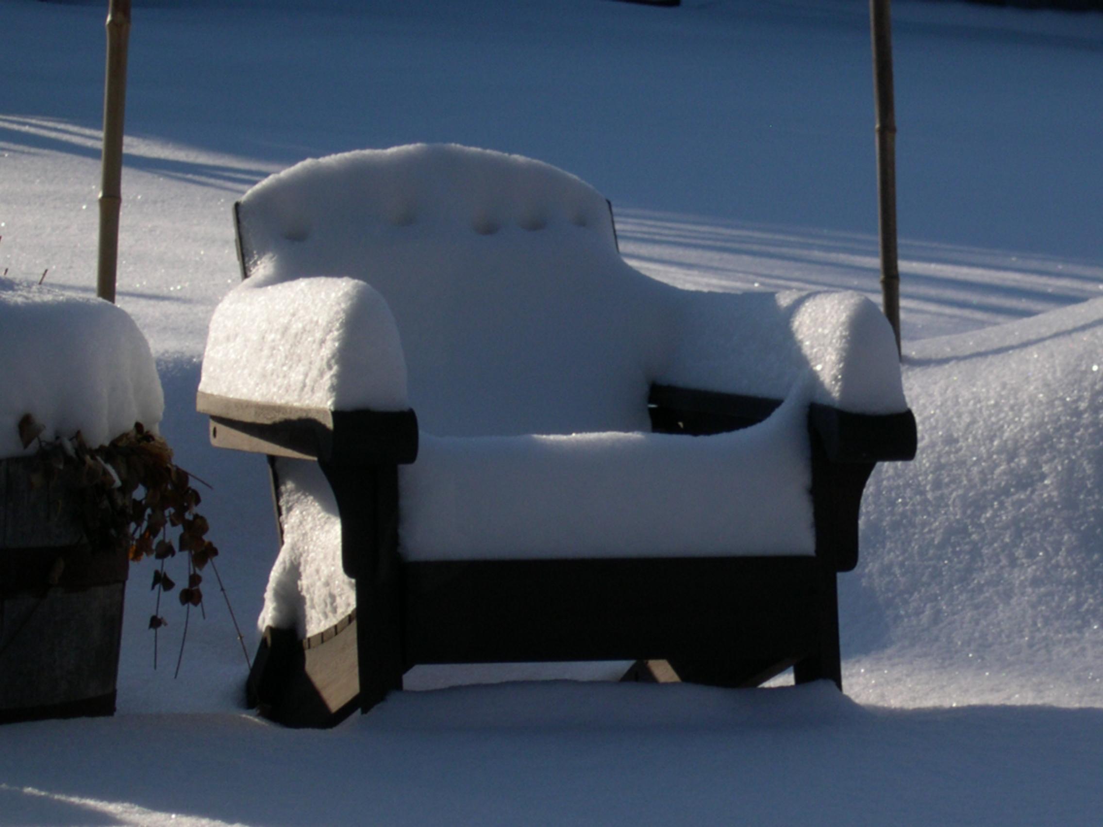 winter contemplation2