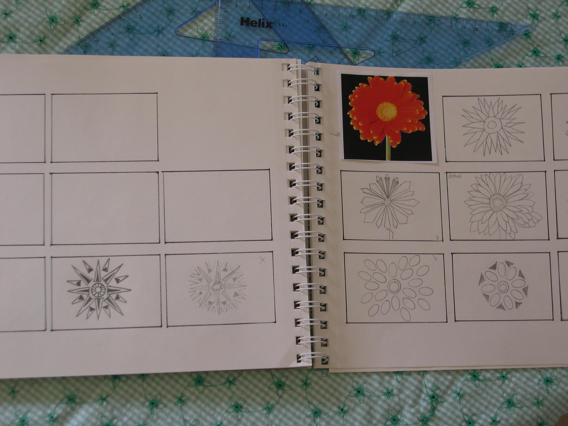 daisy drawings