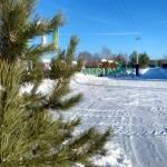 Хотите купить земельный участок в КП Green Park (д. Бекетово, Ступинский район)? Звоните по телефону 8 (800) 444-64-58 | Агентство недвижимости Территория. Фото 20