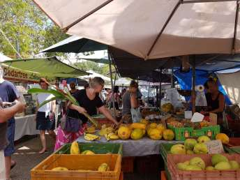 Fresh tropical fruit