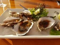 Oysters in Darwin
