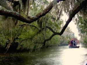 Louisiana Swamp Airboat