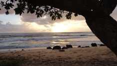 Kauai Sunrise - Nukolii Beach
