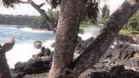 Ke'Anae Peninsula on Mau'i (2)