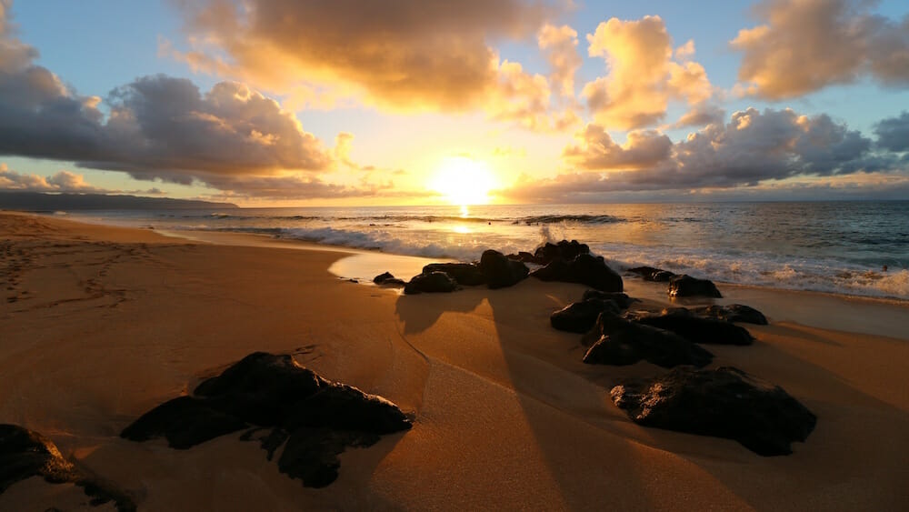 North Shore Oahu by Bradley Davis - 2016-02-26 1000x563