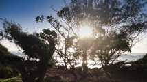 Sunrise through the trees at Kauai's Lydgate Park.