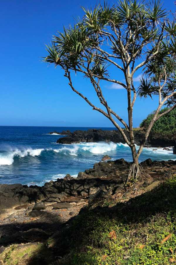 Friday Fotos – on the Road to Hana for another fab view