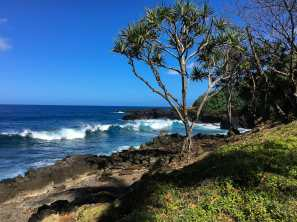 Alongthe Road to Hana