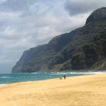 Polihale Beach on Kaua'i - wow