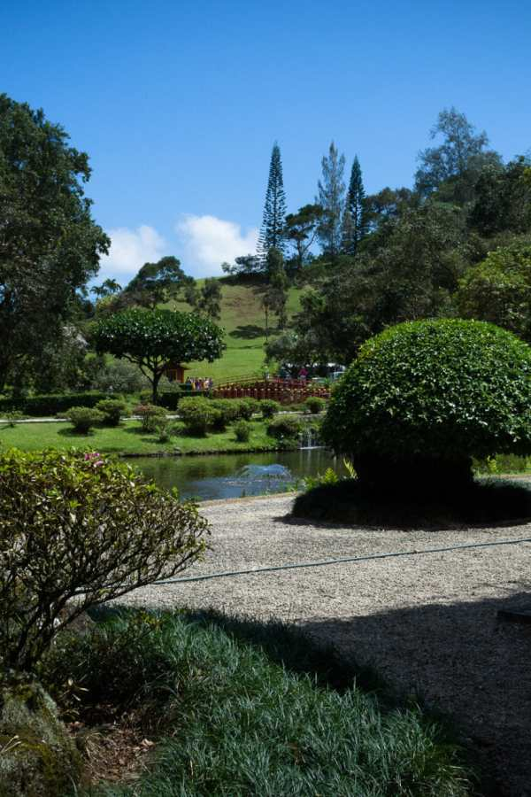 Friday Fotos – Gorgeous Byodo-In Temple Grounds