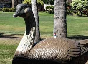 Ariel rides the big bird at Bishop Museum!