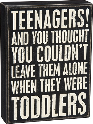 Box Sign - Teenagers!