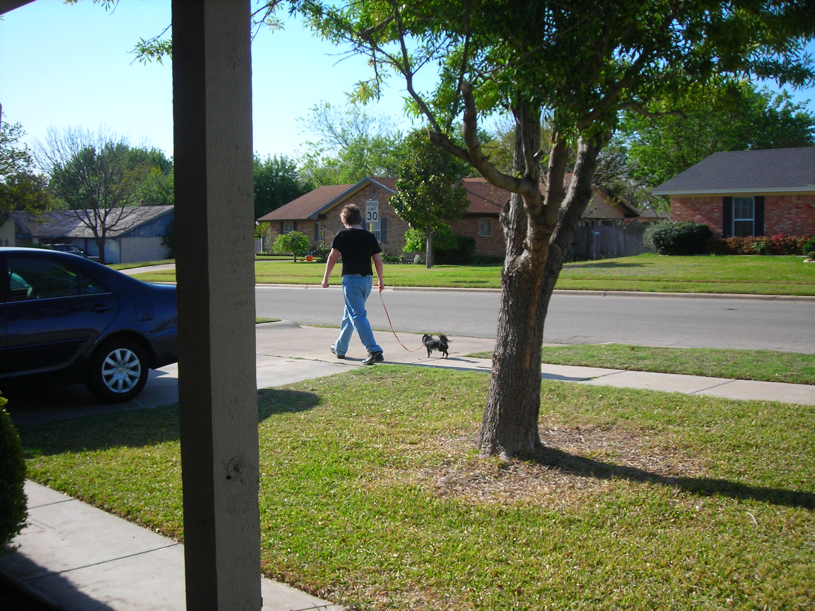 a boy and his dog ... goin' for a walk 'round the 'hood