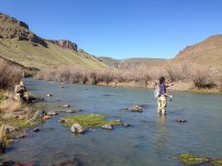 Nick and Alex working a section of Owyhee River.