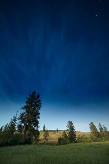 Stars of Sweet Ola Valley, Idaho