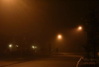 fog side light 900 021