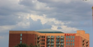 AAD Conference, 2013, Savannah 077 (800x403)