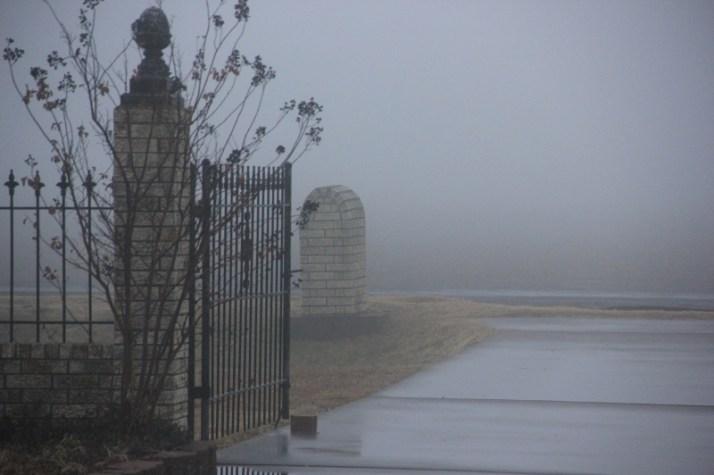 fog 004 (800x533)