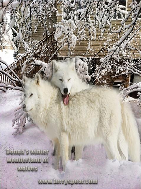 Donna snow wolves text bigger copy