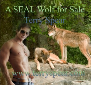 a seal wolf for sale copy (640x597)