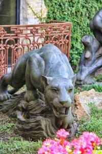lion front view (427x640)