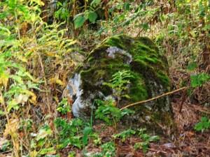 moss stone (640x480)