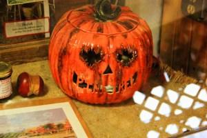 Apple Farm and Pumpkin Patch