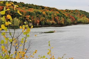 River St Croix and deer 012 (640x427)