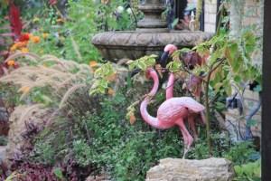 Flamingos in White Bear