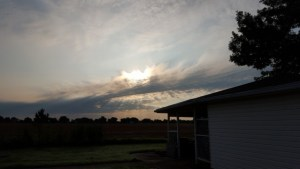 Morning sky and sun's rays