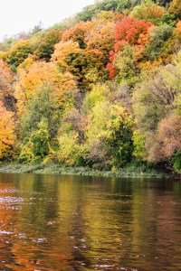 Fall Reflections in the River