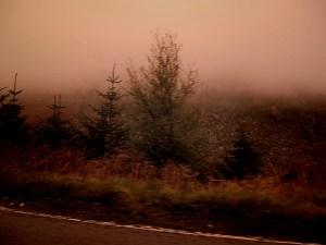 heavy fog rocky area (640x480) dark