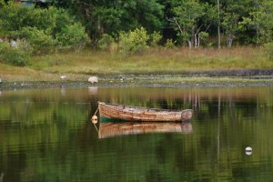 Old Boat, Loch Reflection