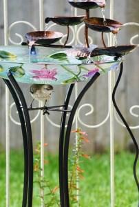 baby mockingbird under fountatin (431x640)