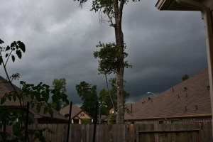 rain 055 (640x427)