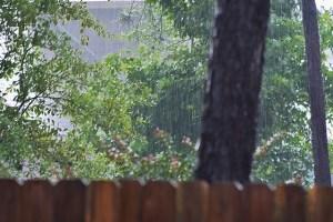 rain 064 (640x427)