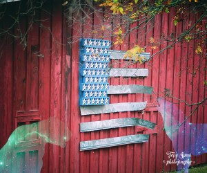 flag-artwork-on-barn-cat-and-wolf900