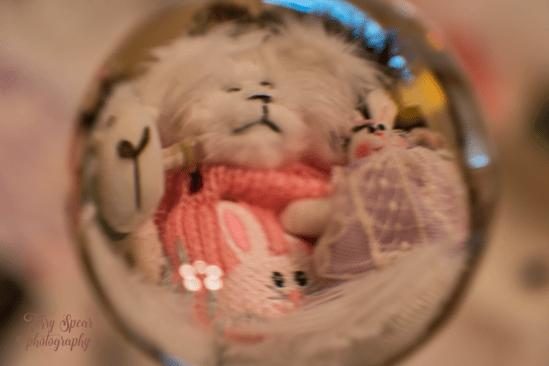 bear in a glass ball 900 012