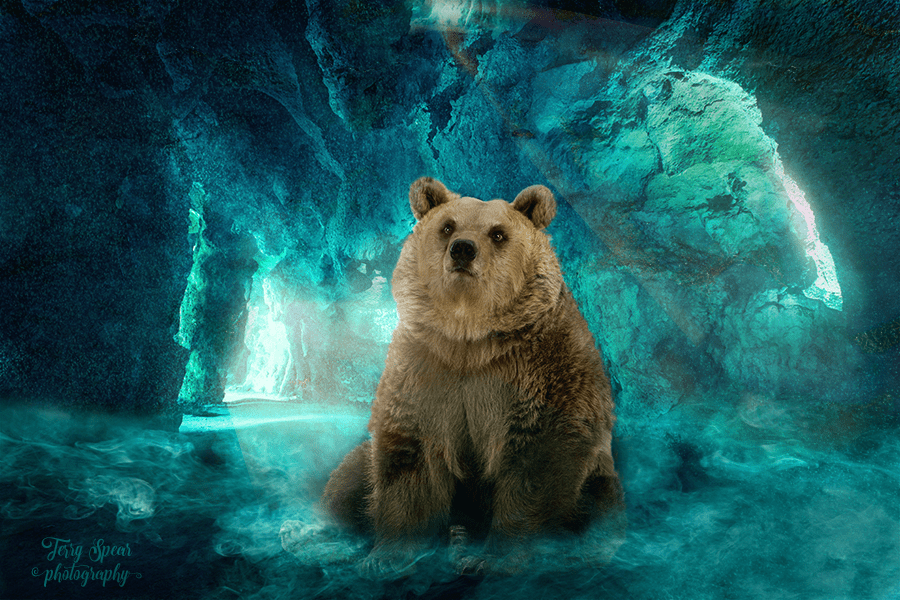 Cave Background green and bear blue fill on top 900 -6