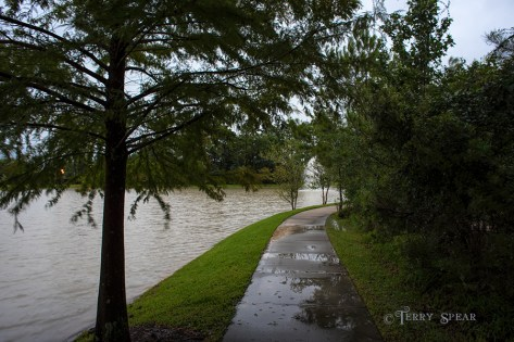 Hurricane Harvey storms pond flooded 900 049