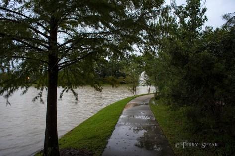 Hurricane Harvey storms pond flooded 900 049