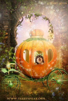 Tanner frog prince in pumpkin carriage background1 magic 900 final