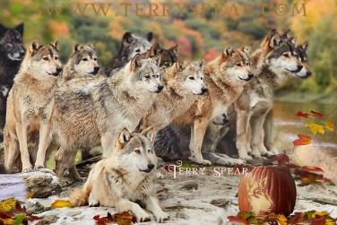 wolf pack fall jack-o-lantern 900