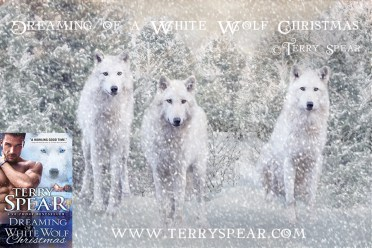 Three beautiful white wolfs looking directly into the camera ** Note: Slight blurriness, best at smaller sizes