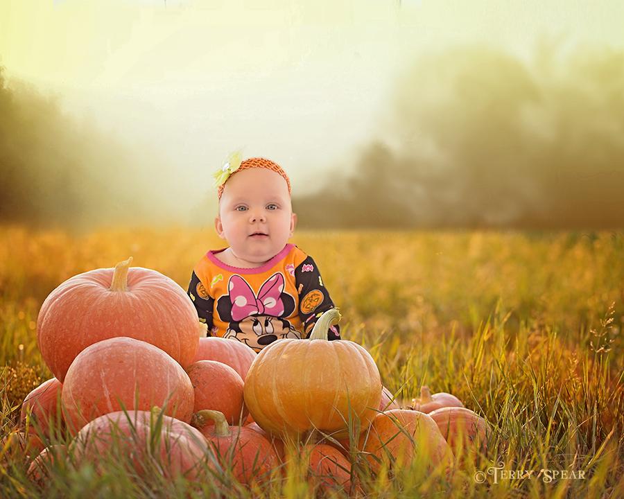 baby and 900 Pumpkin Haze 6000