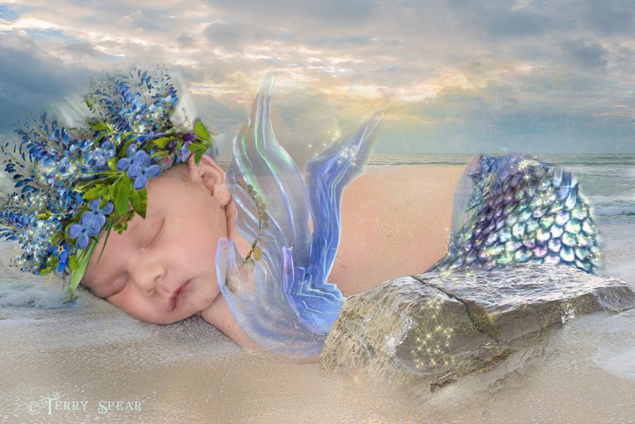 Baby mermaid2 900 216