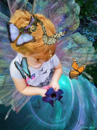hannah1 fairy wings 6000