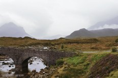 Fog and ancient bridge Scotland Sept 2015, 900 6885